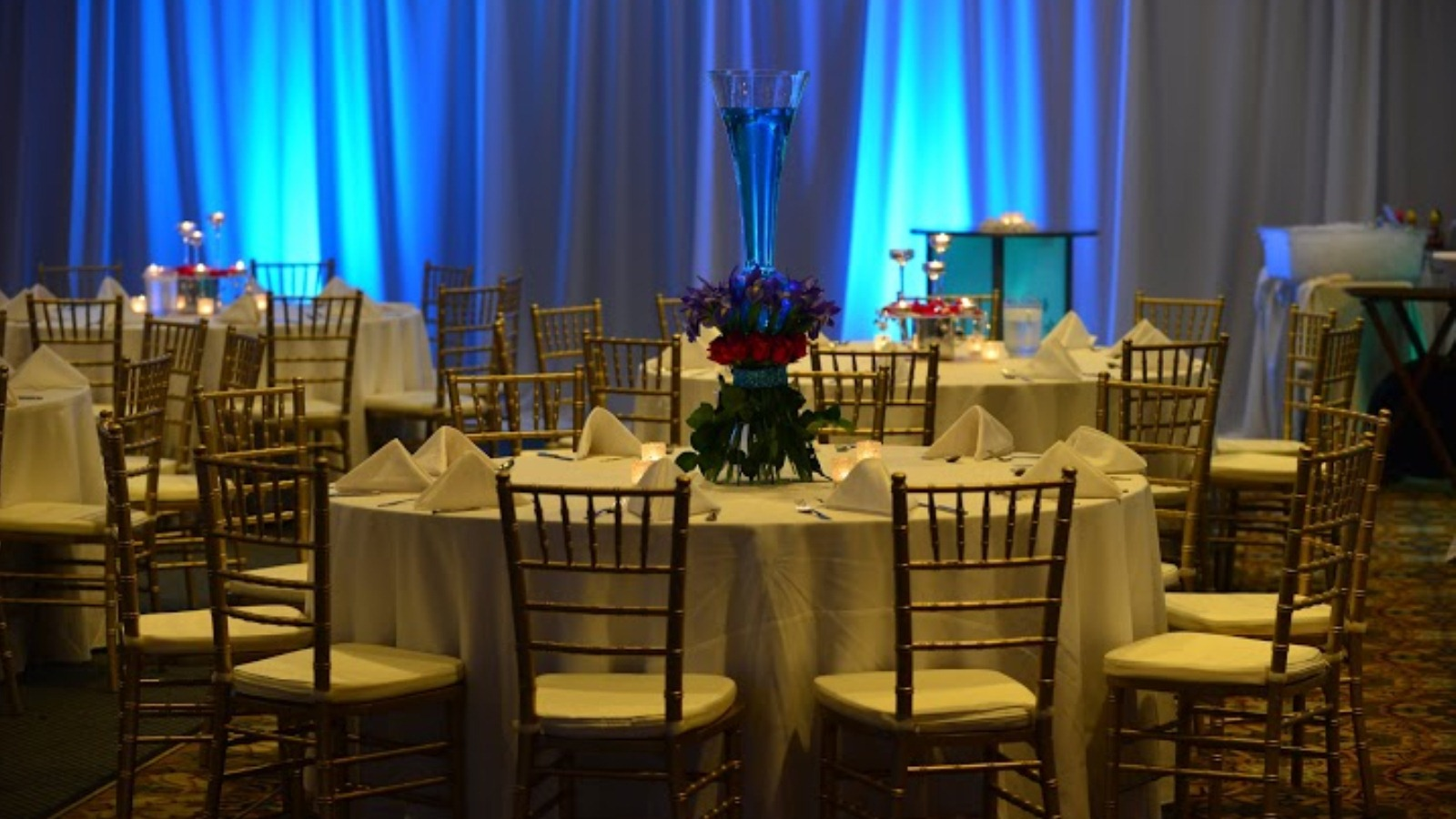 Beautiful Wedding Venues in Lisle IL